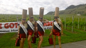 Gorgeous route through the vineyards at the Half Corked Marathon—Caroline Helbig