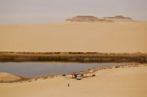 Egypt's Great Sand Sea surrounding Siwa—Caroline Helbig
