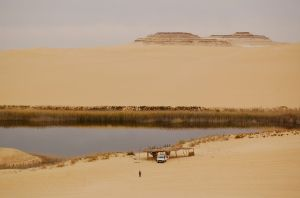 Egypt's Great Sand Sea surrounding Siwa—Caroline Helbig
