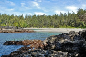 Halfmoon Bay at Pacific Rim Park—Caroline Helbig