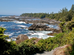 Ucluelet's Wild Pacific Trail—Caroline Helbig