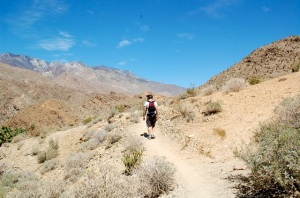 Victor Trail, Indian Canyon Palm Springs—C.Helbig