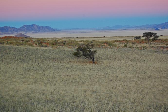 Namib-Rand Nature Reserve—C.Helbig