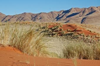 NamibRand Nature Reserve—C.Helbig