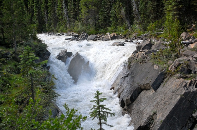 Yoho River along Laughing Falls Trail, Yoho National Park, British Columbia. C. Helbig