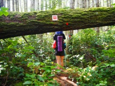 Sunshine Coast Trail, British Columbia