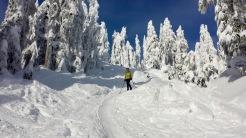 Cypress Provincial Park, British Columbia