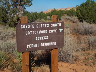 Trailhead at Cottonwood Cove parking lot—C.Helbig
