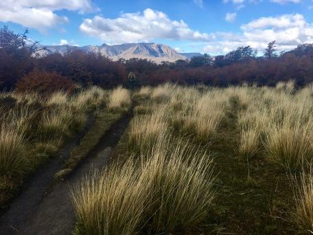 Loma del Pliegue trail